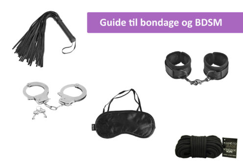 bondage og BDSM guide cover